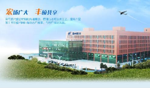 温州宏丰电工合金股份有限公司引进SIPM/PLM