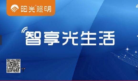 浙江阳光照明电器集团股份有限公司实现企业数据双向流通
